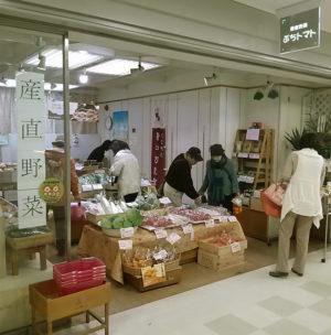 大分の野菜農家さん「ぷちトマト」開店